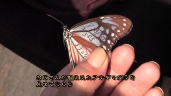 omaera ikuna kyushu special IMAGE 08