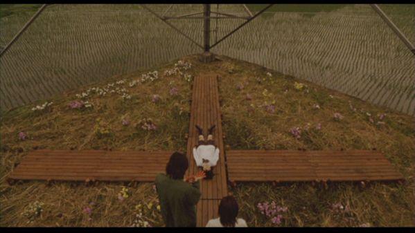 hasami otoko IMAGE 01