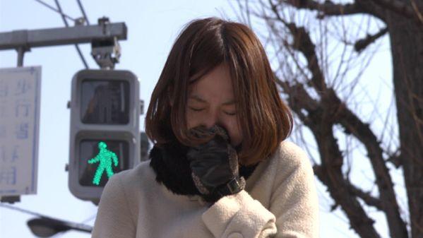inumichi dogsway IMAGE 16