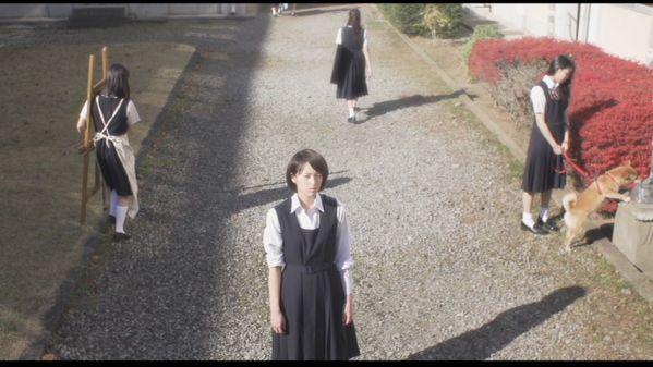 nowhere girl oshii mamoru IMAGE 01